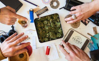 #60 Les Clubs Sociaux de Cannabis, la solution pour le Québec?